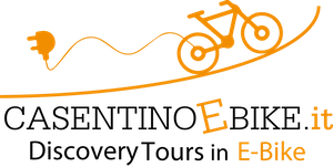 ebike_rental